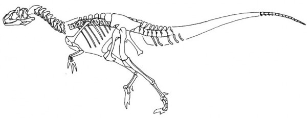 Skeleton of Abrictosaurus Coloring Pages