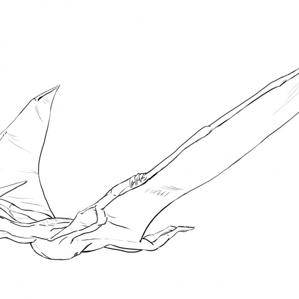 Pteranodon Coloring page for Kids