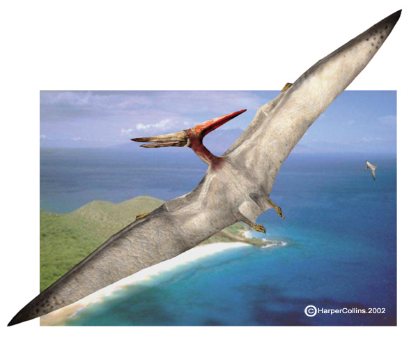 Pteranodon Facts Sheet for Kids