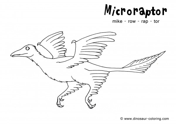 Microraptor Coloring Sheet