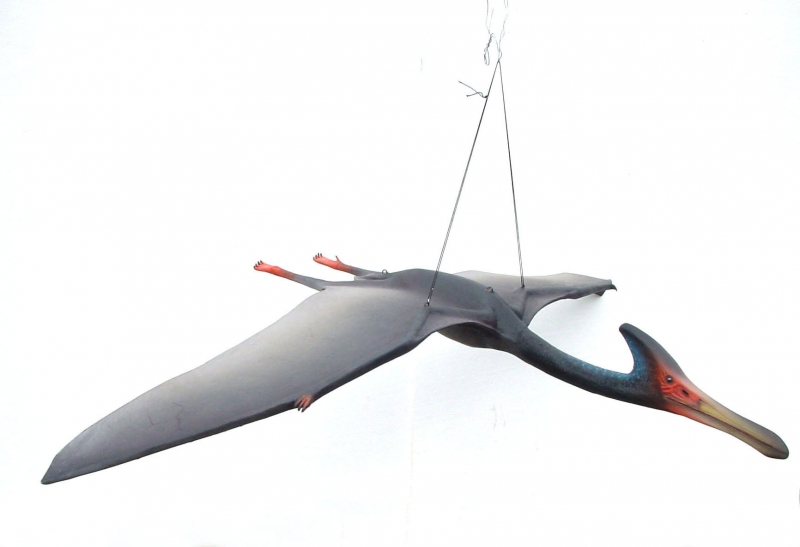 pteranodon cool facts