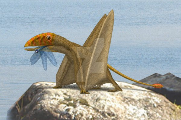 Peteinosaurus Facts – Stunning Winged Lizard with extra-long fingers