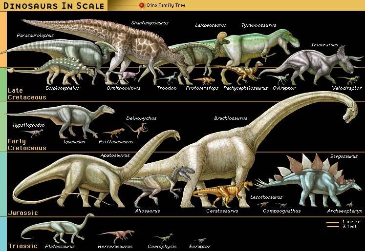 dinosaur interesting facts