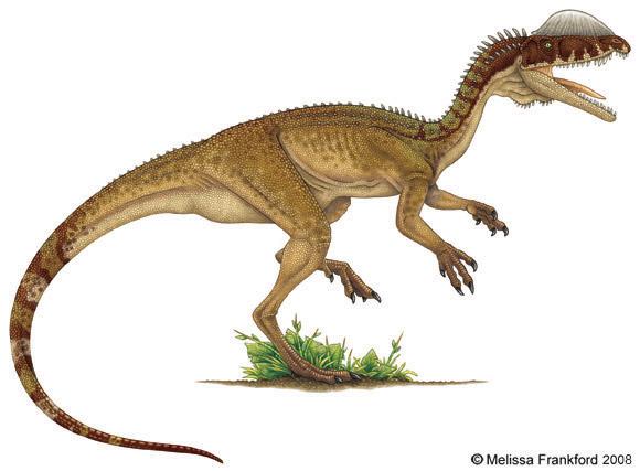 Jurassic Park Dinosaurs - Dilophosaurus