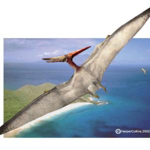 Jurassic Parks Dinosaurs – Pteranodon