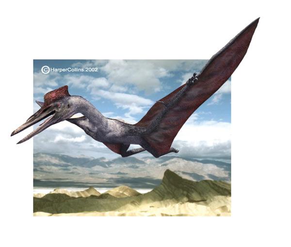 Flying Dinosaurs - Quetzalcoatlus