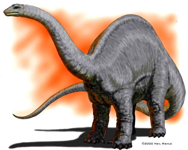 Jurassic Park Dinosaurs - Apatosaurus