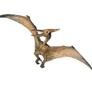 Flying Dinosaurs – Pteranodon