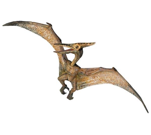 Flying Dinosaurs - Pteranodon