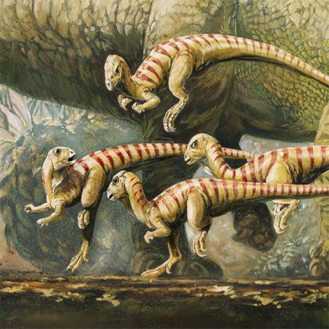 pictures of dinosaurs- Hypsilophodont