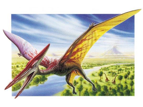Flying Dinosaurs – Pterodactyl
