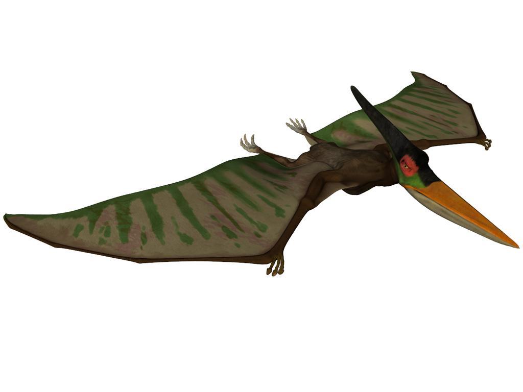 Flying Dinosaurs - Pterosaur