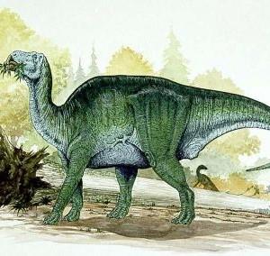 Biggest Hadrosaur : Shantungosaurus