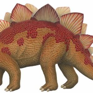 interesting facts stegosaurus