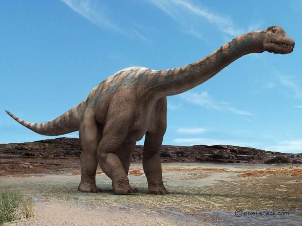 Pics of Dinosaurs – Sauropods – Argentinosaurus