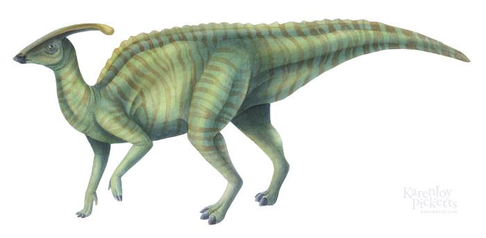 Duck Billed Dinosaur - Parasaurolophus