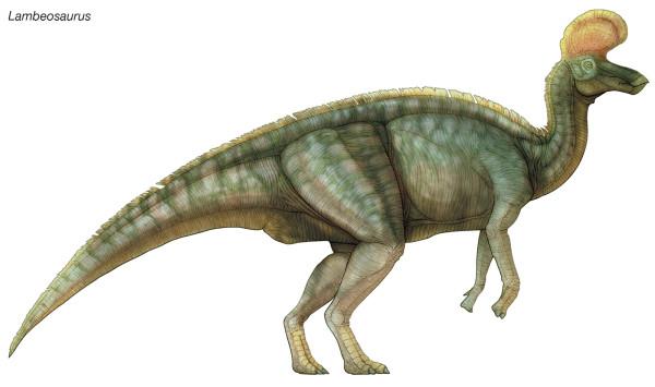 Pics of Dinosaurs – Lambeosaurus