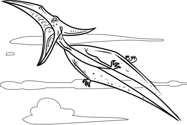 Roaring Pteranodon Coloring Page
