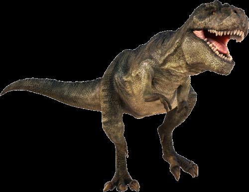 t rex dinosaurs videos