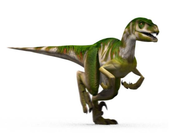 Pics of Dinosaurs – Utahraptor