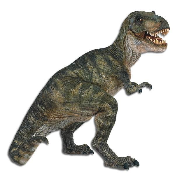 Pics of Dinosaurs – T-Rex