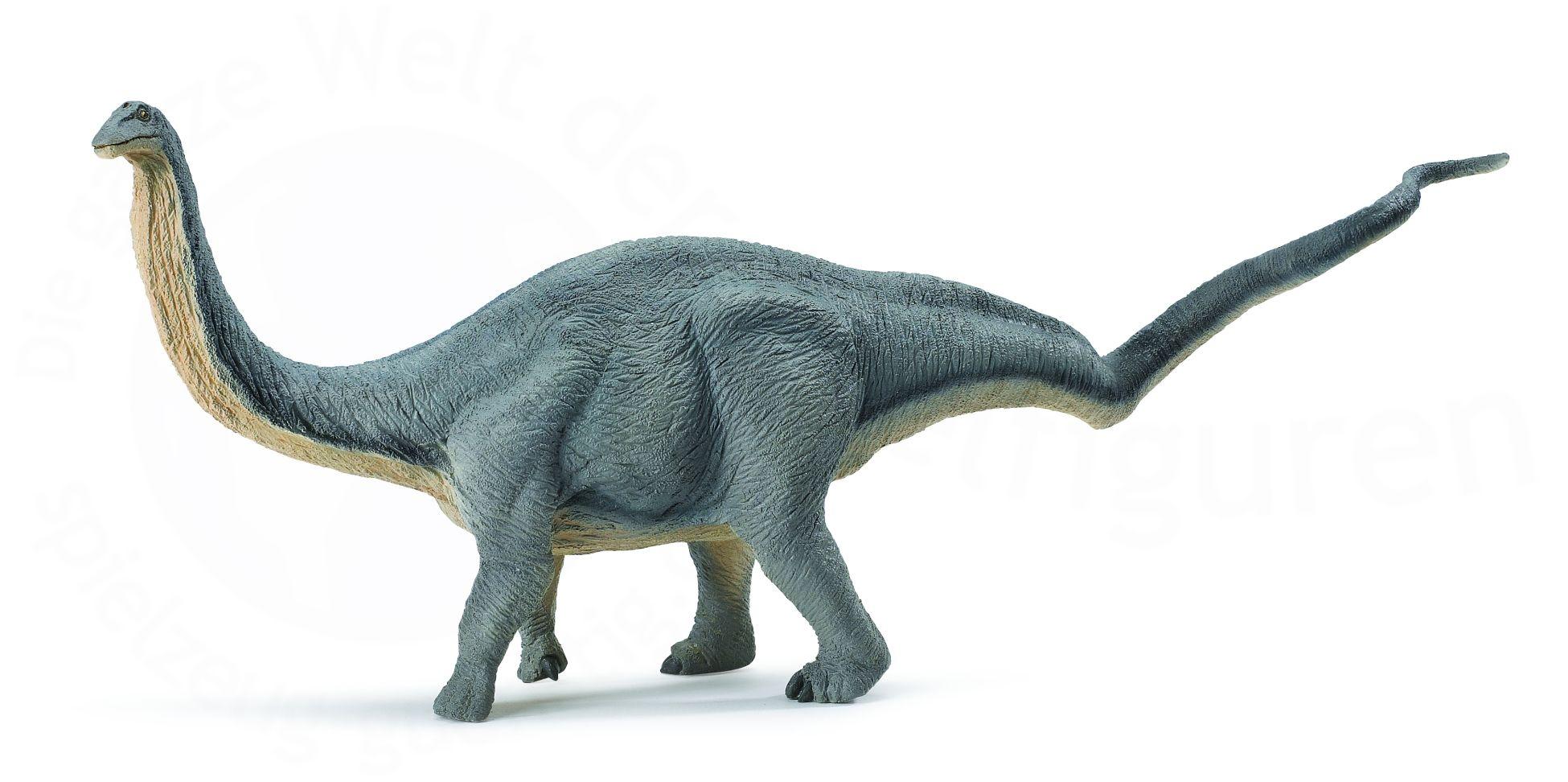 Pics of Dinosaurs – Sauropods – Apatosaurus