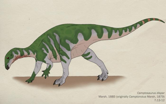 Camptosaurus habitat and intelligence