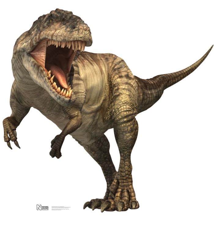 Giganotosaurus dinosaur facts