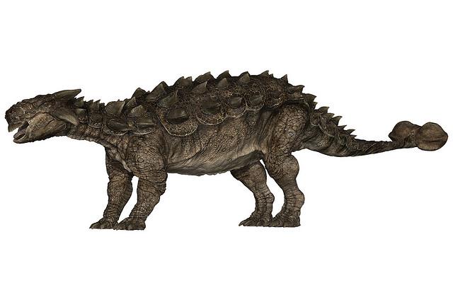 tarchia dinosaur facts