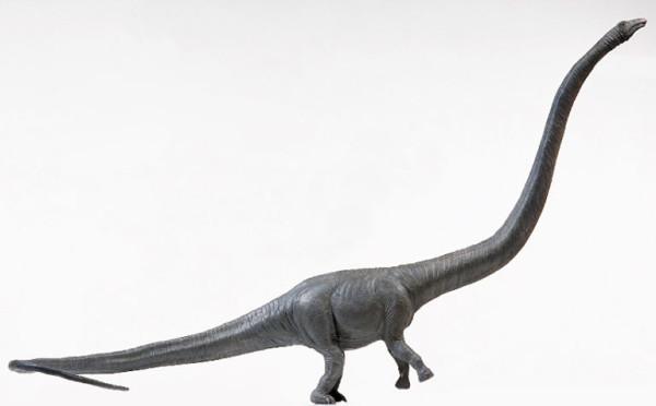 Barosaurus habitat