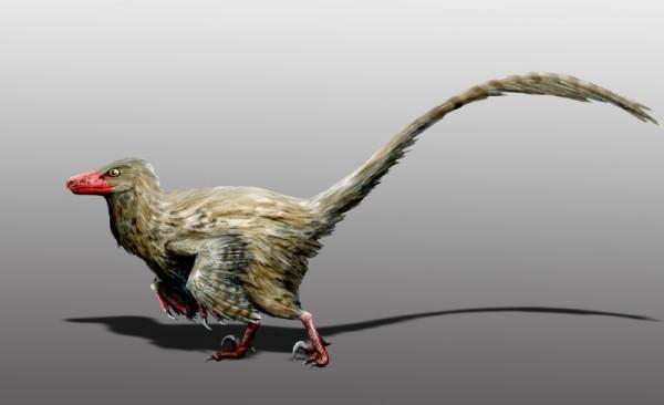 Hesperonychus dinosaur facts