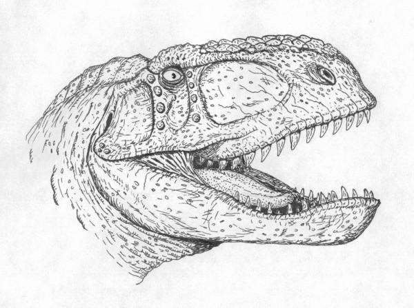 Free Printable Abelisaurus Coloring Page