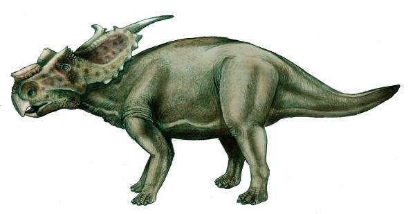 achelousaurus dinosaur king