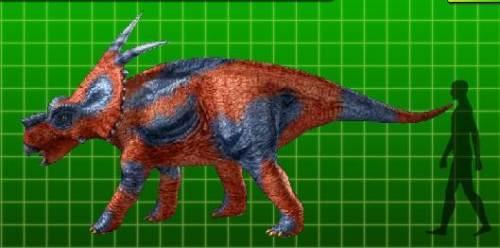 achelousaurus size