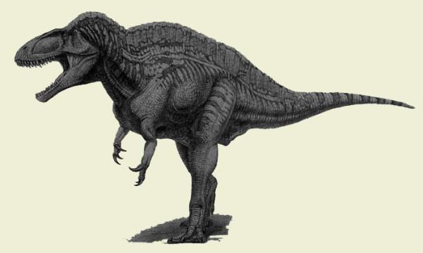Acrocanthosaurus dinosaur facts
