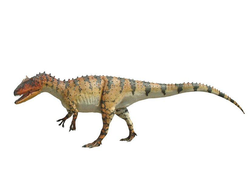 allosaurus facts sheet