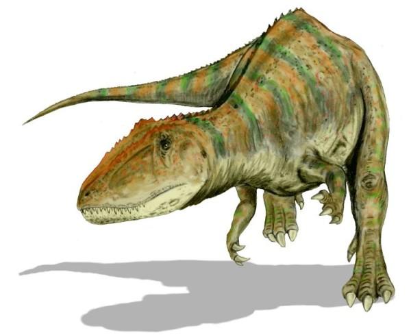 biggest carnivorous dinosaur found Carcharodontosaurus
