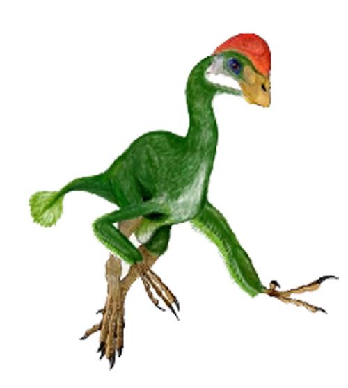 Chirostenotes Dinosaur Facts