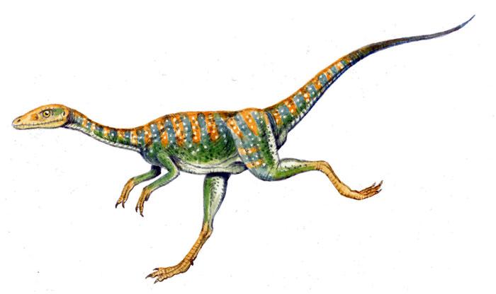 Compsognathus habitat