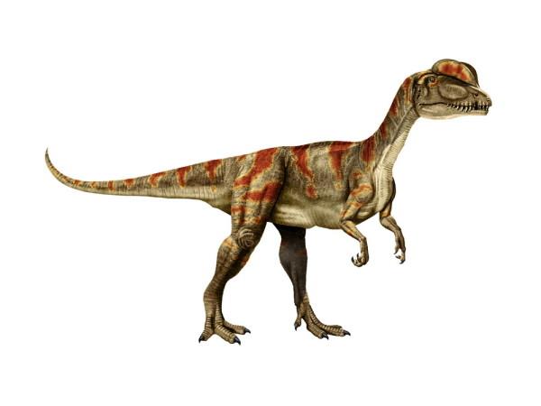 dilophosaurus facts for kids