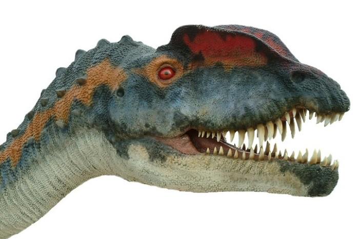 Dilophosaurus cool facts