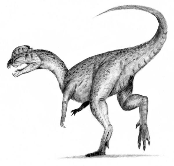 dilophosaurus facts sheets