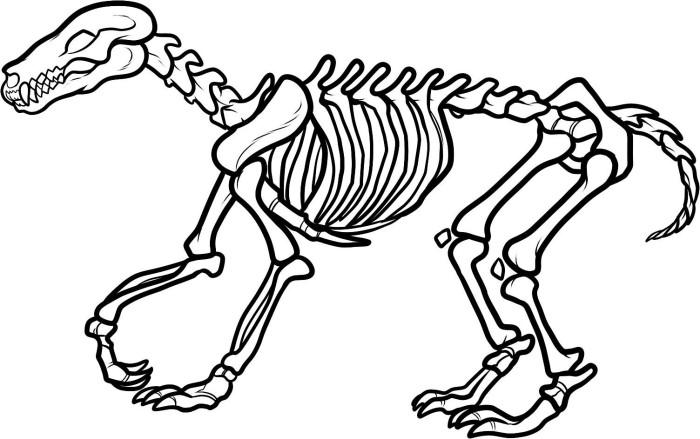 Free Dinosaur Skeleton Coloring Page