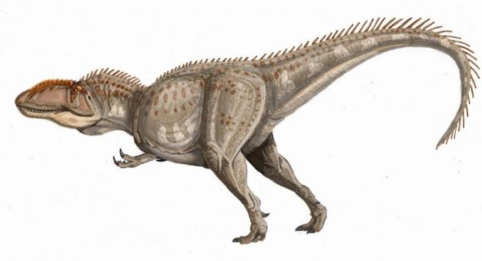 giganotosaurus primeval
