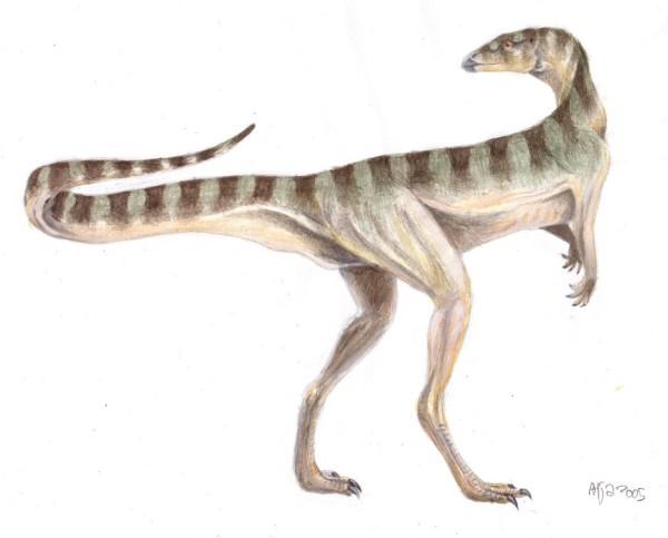 Smallest Dinosaur – Lesothosaurus