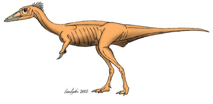 Rapator Dinosaur Facts