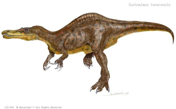 suchomimus vs allosaurus