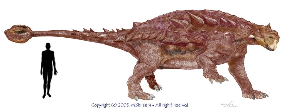 tarchia vs ankylosaurus
