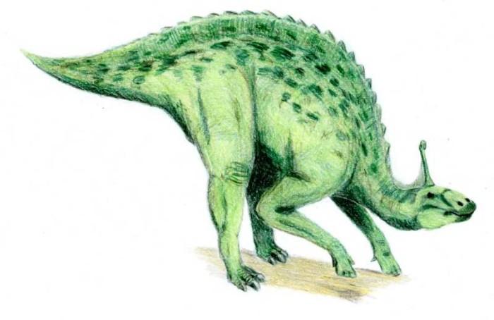 tsintaosaurus diet