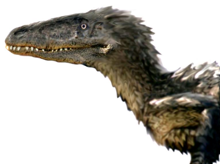 utahraptor vs t rex